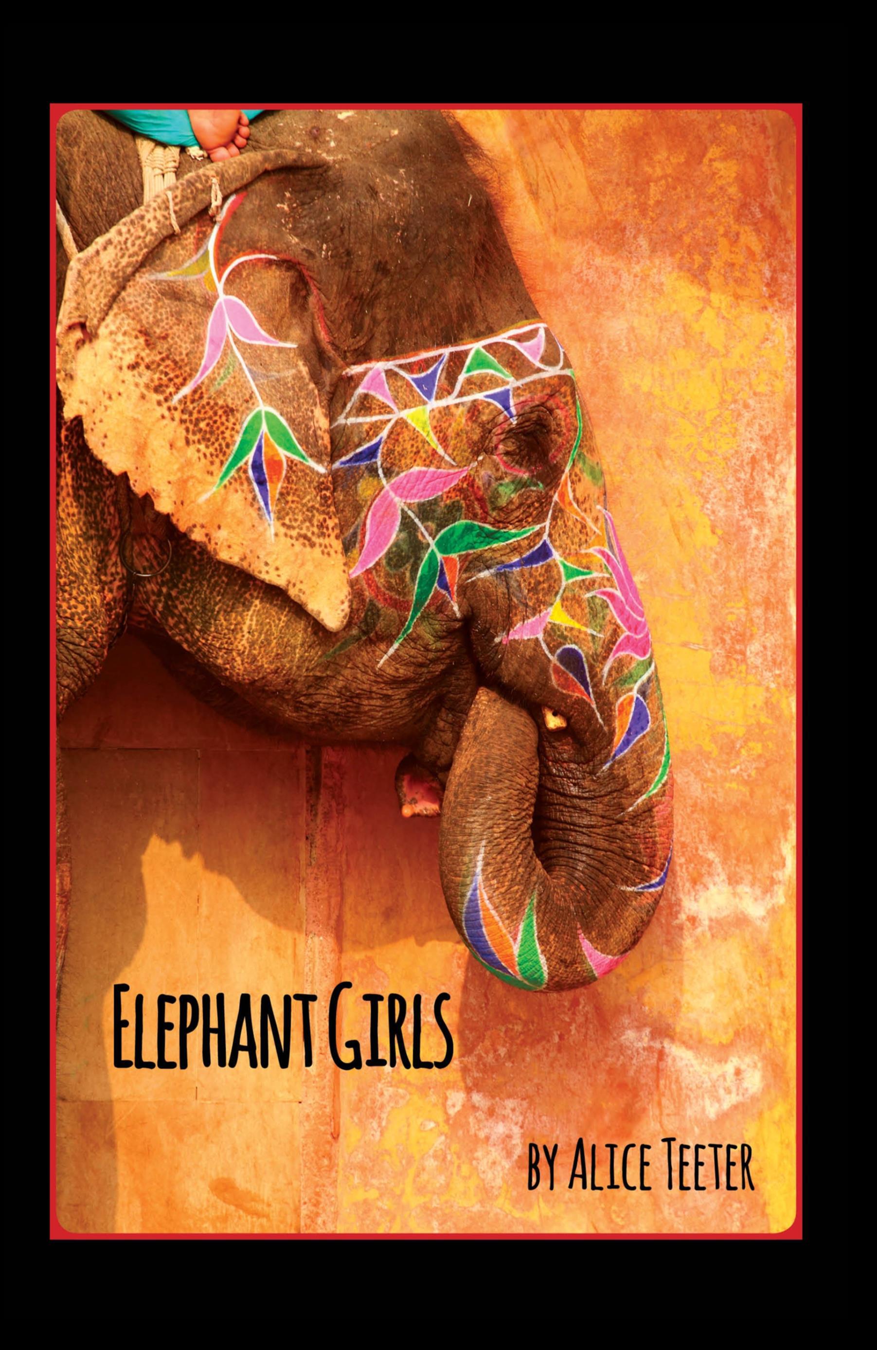 https://www.charisbooksandmore.com/sites/charisbooksandmore.com/files/ELEPHANT-GIRLS-FRONT-COVER.jpg